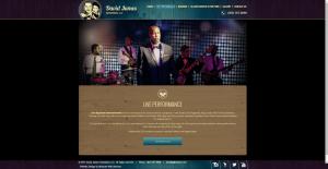 Entertainment-Custom-Website-Miami
