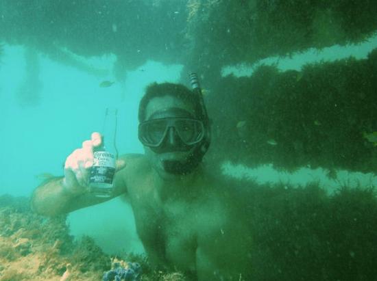 Underwater Design Inspiration