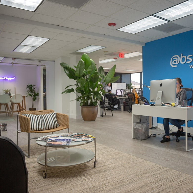 absolute-web-miami-team-at-work-7
