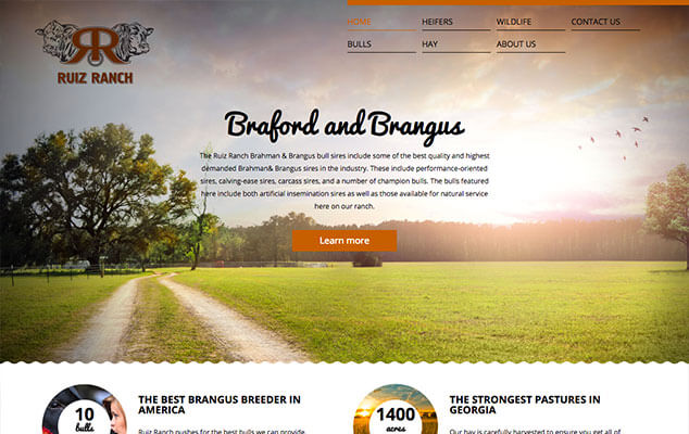 Ruiz Ranch Custom Webdesign Wordpress Homepage
