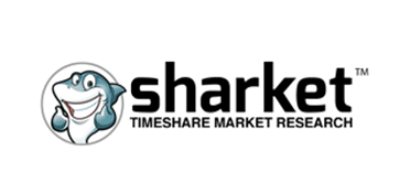 client-of-absolute-web-services-sharket