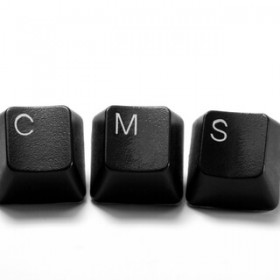 Custom Content Management: Meeting Individualized Needs