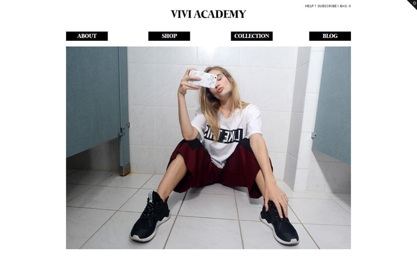 custom-shopify-development-vivi-academy-1