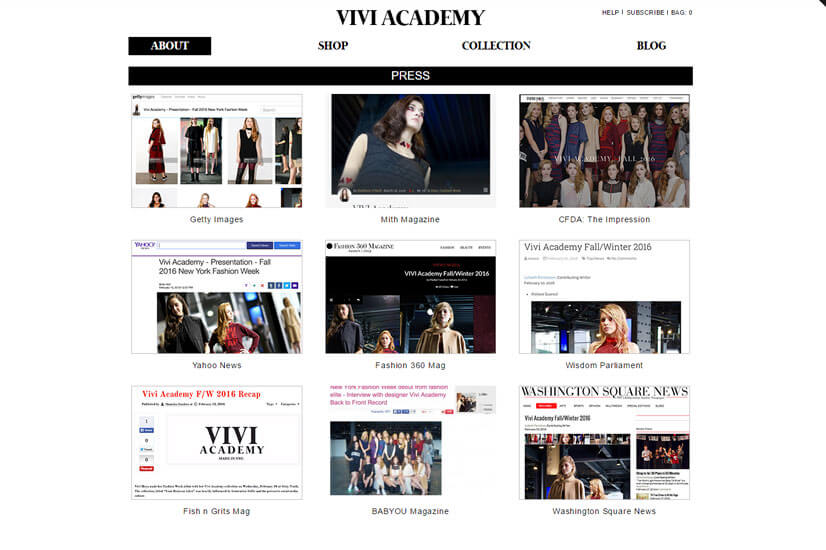 custom-shopify-development-vivi-academy-2