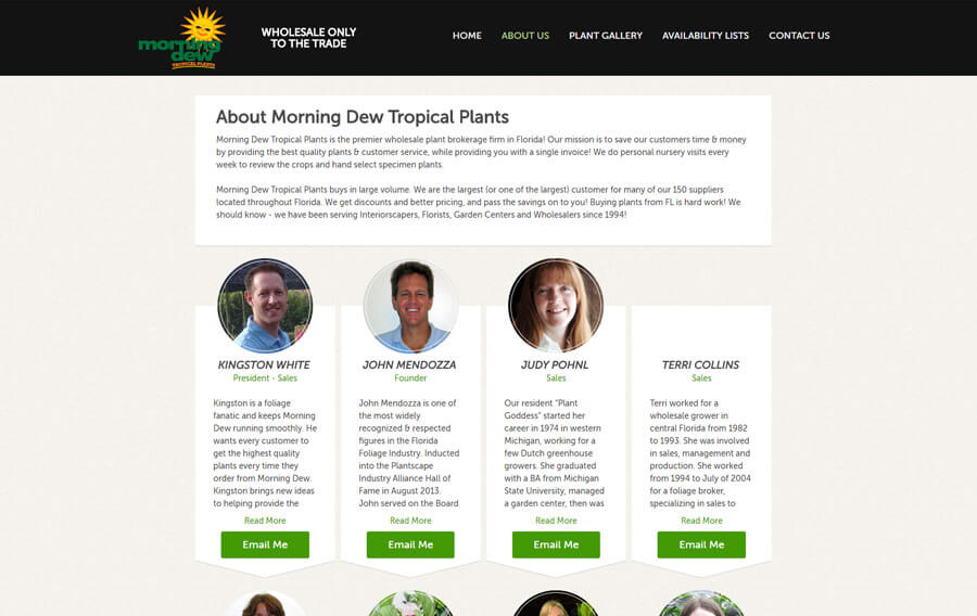 custom-wordpress-miami-morning-dew-3