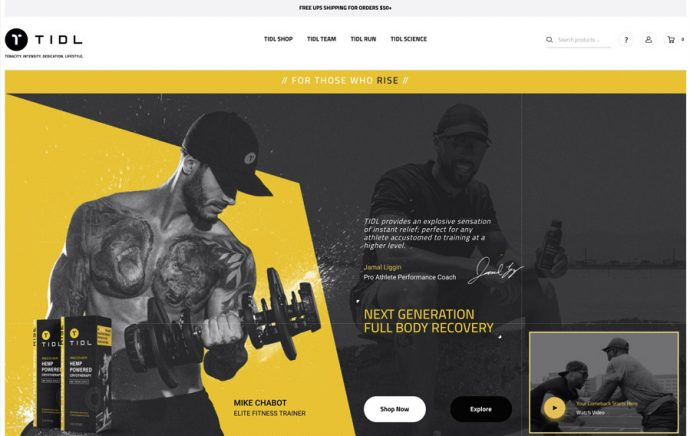 ecommerce-development-design-by-absolute-web-tidl-sport-1