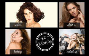 EZ BlowDry
