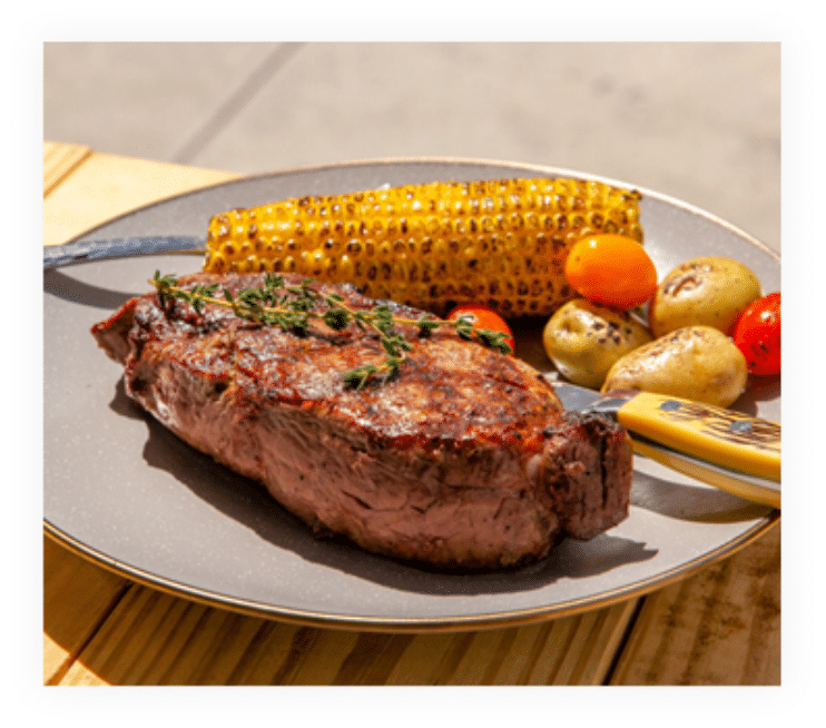 grand-western-steaks-absolute-web-1