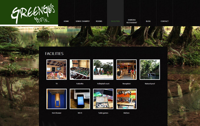 Greengo's Hotel-gallery-929