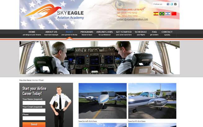 SkyEagle Aviation-gallery-766