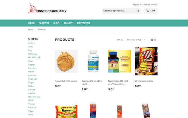 son-driven-shopify-web-development-by-absolute-web-services-2