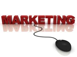 Website Marketing Campaigns