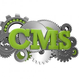 Which Content Management System Is Right for My Business?