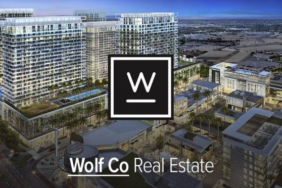 wolf-co-real-estate-1