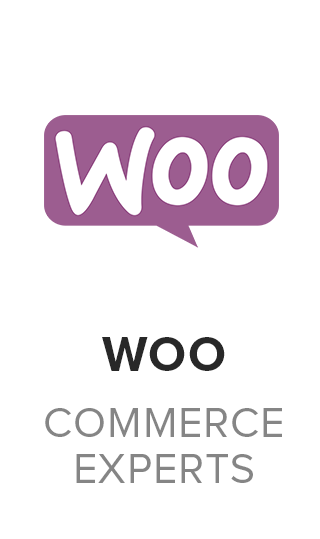 woocommerce-experts-in-miami-aws