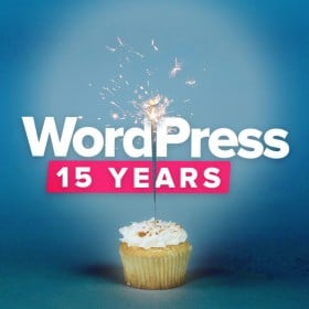 wordpress-15-years-development-agency