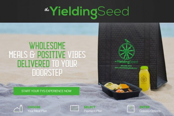 yielding-seed-web-development-by-aws
